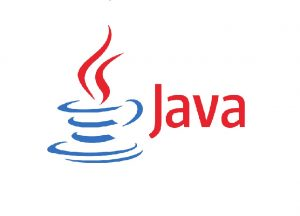 Java Programming Language