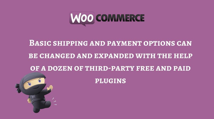 wooCommerce Advantages