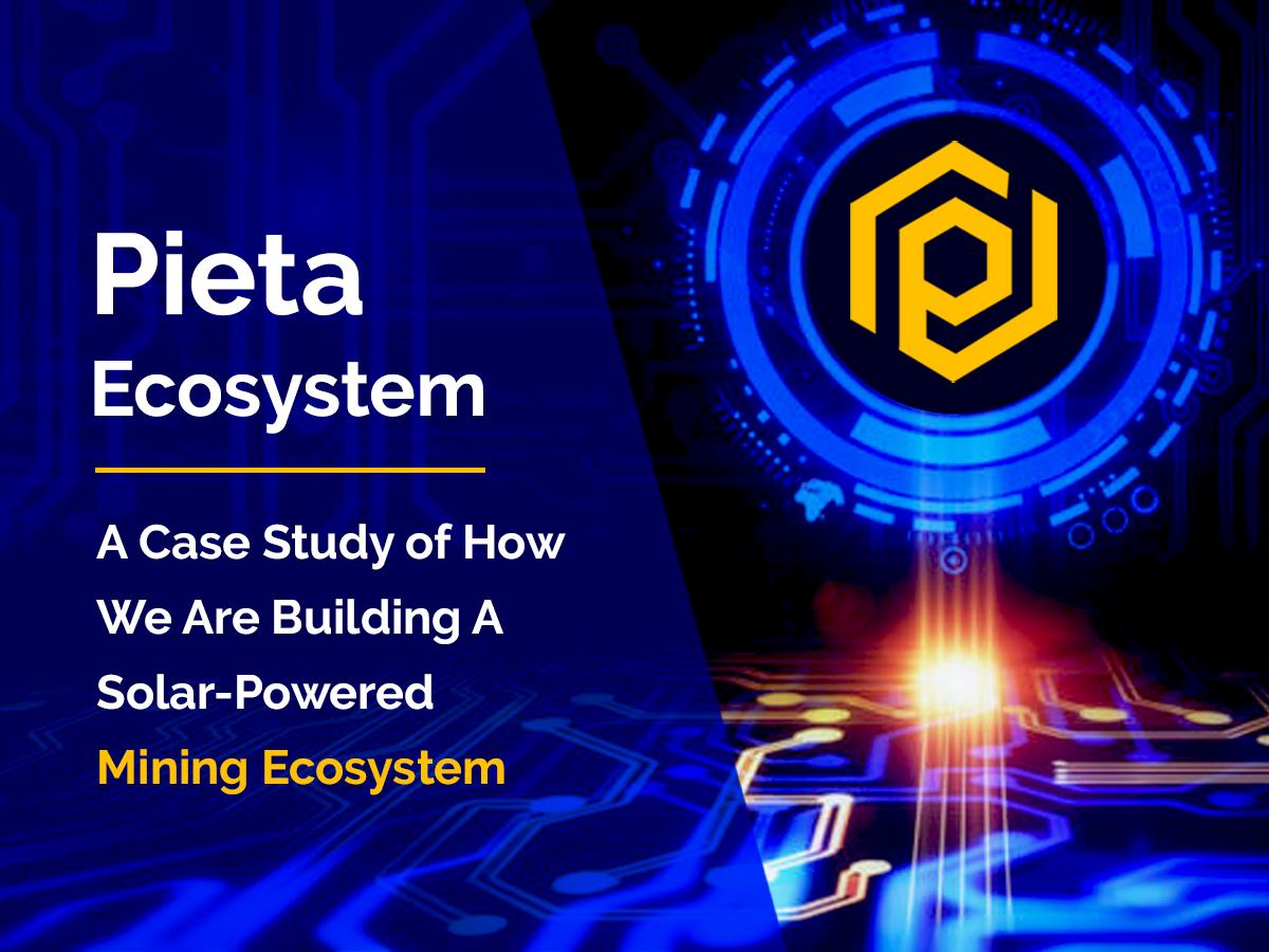 pieta-ecosystem-case-study