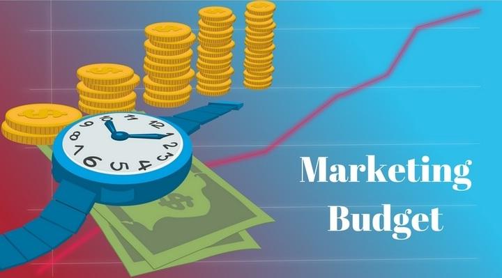 IEO Marketing Budget